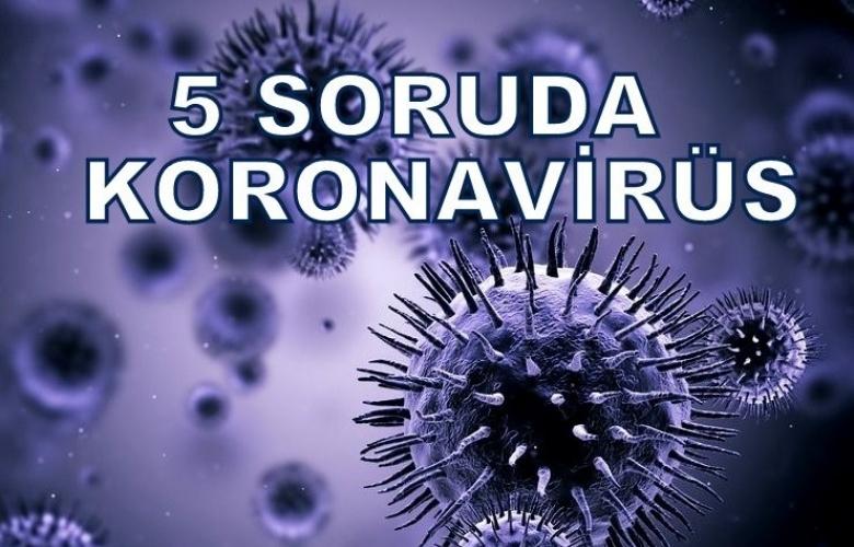 5 SORUDA KORONAVİRÜS